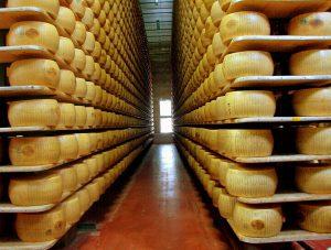انبار پنیرهای پارمسان